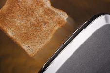 Free Toaster Royalty Free Stock Image - 16635346