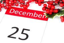 Free Christmas Stock Photo - 16636190