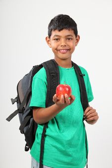 Free Cheerful School Boy 10 Smiling Holding Red Apple Stock Images - 16637894