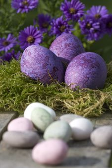 Free Easter Eggs In Pastel Color Royalty Free Stock Photo - 16637995