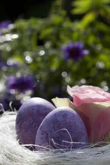 Free Easter Eggs In Purple With Rose In The Garden Stock Photography - 16638132