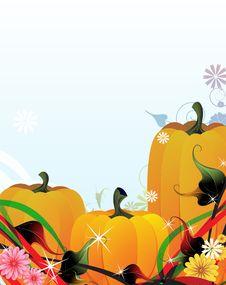 Free Fabulous Pumpkins Royalty Free Stock Image - 16638206