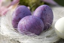 Free Three Easter Eggs In Purple Close-up Royalty Free Stock Photography - 16638247