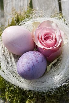 Free Two Easter Eggs In Pastel With Pink Rose Stock Images - 16638304