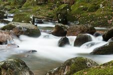 Free Dartmoor Stream Royalty Free Stock Images - 16639029
