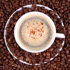 Free Cup Of Coffee Royalty Free Stock Photography - 16639517