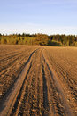 Free Earth Road Across The Field In The Evening Royalty Free Stock Photography - 16645747