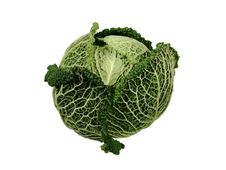 Free Savoy Cabbage Royalty Free Stock Photo - 16640065