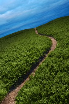 Free Narrow Path Stock Photos - 16640593