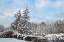 Free Snow-covered Landscape Royalty Free Stock Photo - 16641495