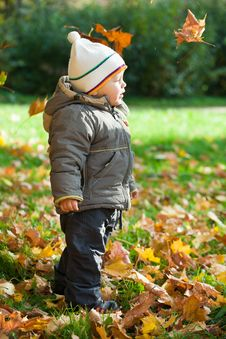Free Kid In Autumn Wood Stock Photos - 16643203