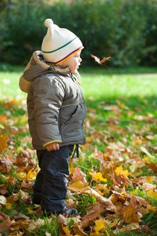 Free Kid In Autumn Wood Stock Image - 16643211