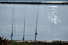 Free Fishing Stock Photos - 16644363