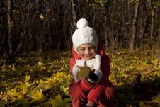 Free Little Girl In Autumn Park Stock Photo - 16644920