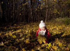 Free Little Girl In Autumn Park Stock Images - 16644934