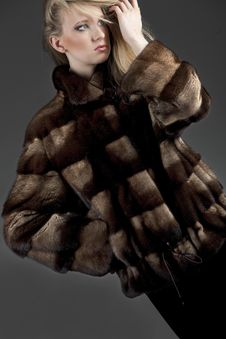 Woman In Fur Jacket Stock Photos