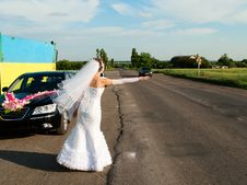 Free Bride Hitch-hike At The Road Royalty Free Stock Photo - 16647115