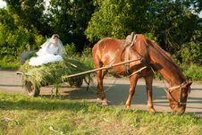 Free Bride In The Old Carriage Royalty Free Stock Images - 16647159