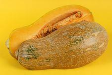 Free Orange Pumpkin Stock Photo - 16648520