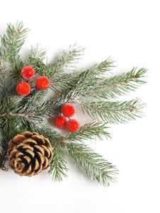 Free Christmas Decorations Stock Photography - 16649452