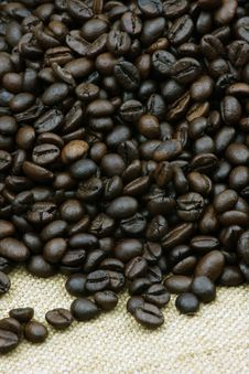 Free Coffee Beans Stock Photo - 16649560