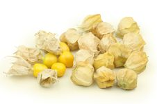 Free Physalis Fruits Stock Photos - 16649633