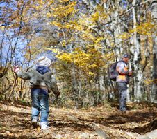 Free Father And Son In Autumn Forest Stock Photo - 16649800