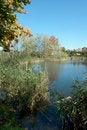 Free Autumn In The Town Stock Photos - 16654313