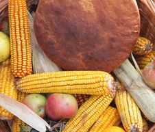 Free Autumn Harvest Royalty Free Stock Image - 16651206