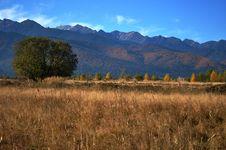 Free Autumn Landscape Royalty Free Stock Image - 16651656