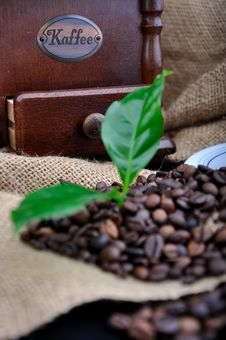 Vintage Coffee Grinder And Fresh Coffee Royalty Free Stock Photo