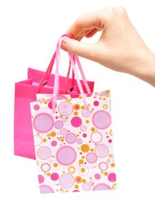 Free Paper Bags In Female Hand Stock Photos - 16652513