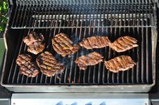 Free Grill Royalty Free Stock Photography - 16653787