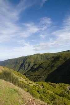 Free Madeira Royalty Free Stock Image - 16654796