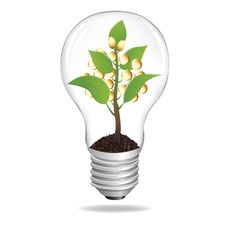 Bulb With Sprout And Coins. Vector Stock Photography