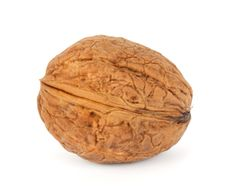 Free Walnut Royalty Free Stock Image - 16657176