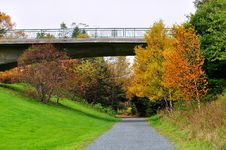 Bridge Over Walking Trail In Autumn Stock Photography