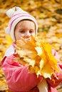 Free Autumn Portrait Caucasian Little Girl Stock Photos - 16660393