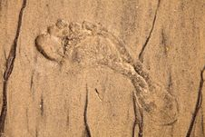 Free Artistic Foot Print In The Sand Royalty Free Stock Images - 16660289