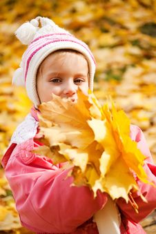 Free Autumn Portrait Caucasian Little Girl Stock Photos - 16660393