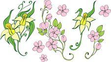 Free Set Of Flowers Stock Image - 16663371