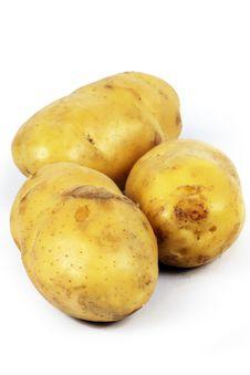Free Three Potatoes Stock Photos - 16666263