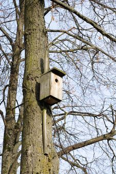 Free Wooden Birdhouse On Tree Stock Images - 16666824