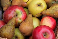 Free Apples And Pears Royalty Free Stock Image - 16668046