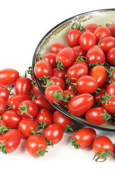Free Cherry Tomatoes Stock Photo - 16668140