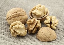 Free Walnuts Closeup Stock Photo - 16668430