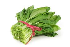 Free Green Chinese Cabbage Royalty Free Stock Image - 16668736