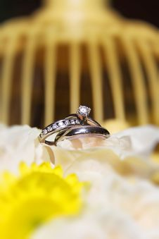Wedding Rings On Flowers With Bird Cage Royalty Free Stock Photography