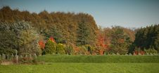 Free Autumn Colors In Lucca Stock Image - 16672271