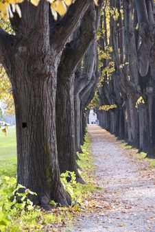 Free Autumn Colors In Lucca Stock Photos - 16672273